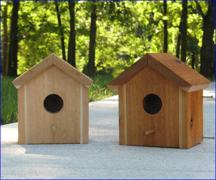 Free Birdhouse Project Plan